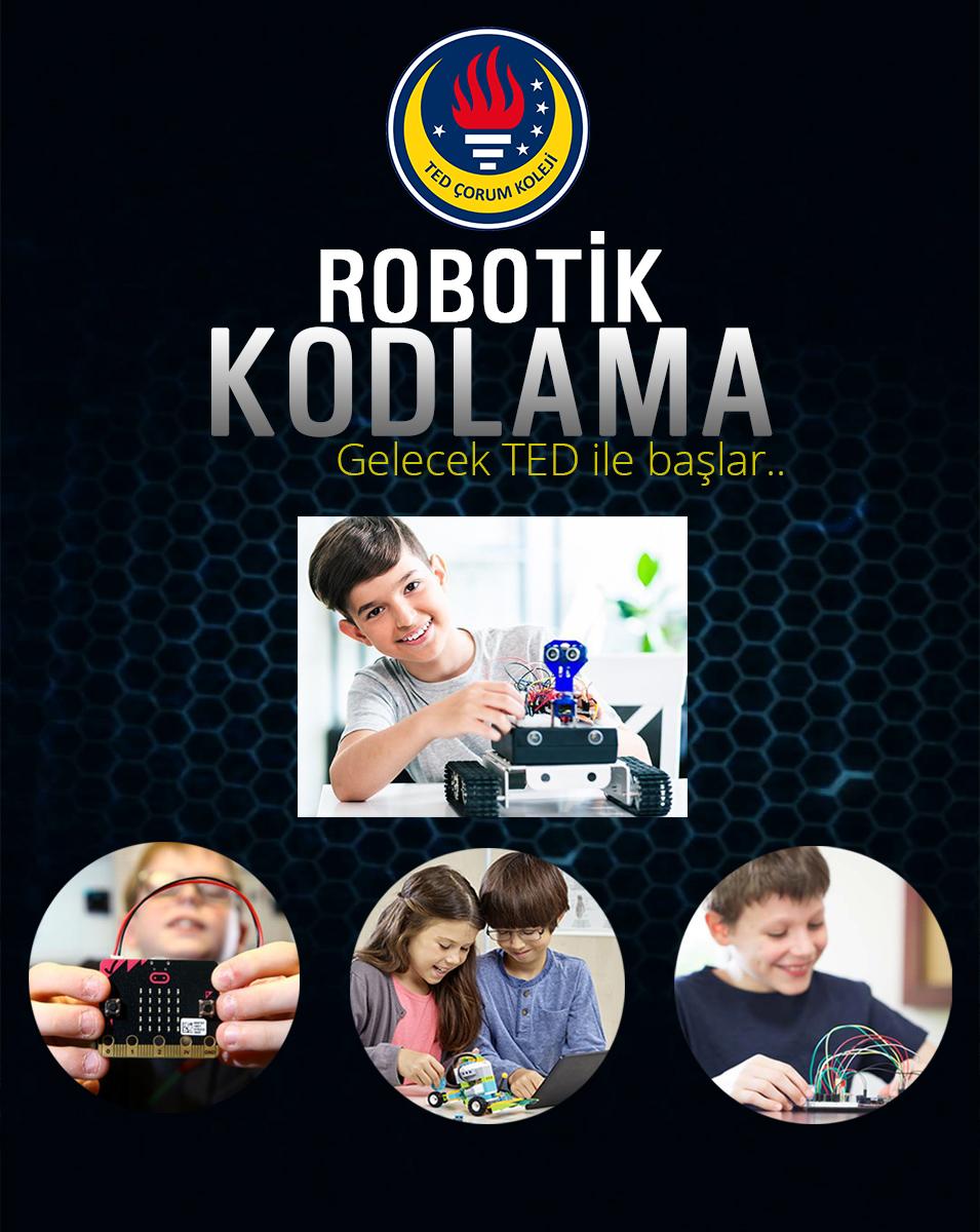 TEDCorum_robotikkodlama